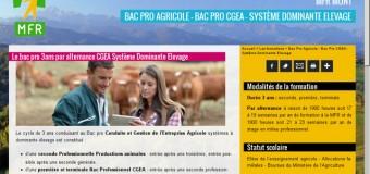 Formations en alternance métiers agricoles, secteur équestre