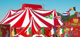 Les numéros visuels dans les cirques